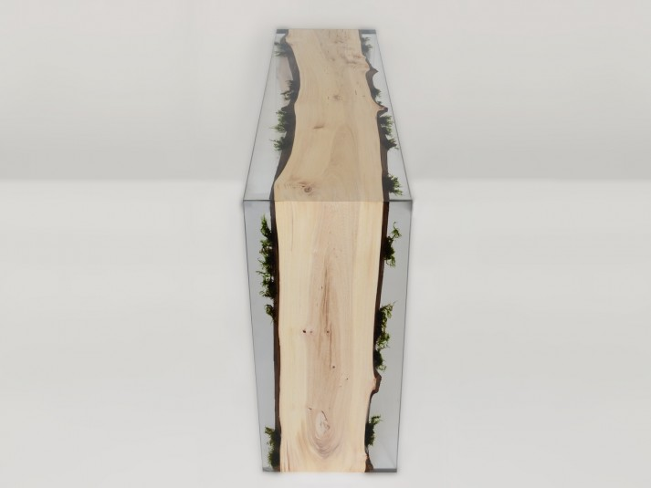 Alcarol Undergrowth Collection - Trail Console sans stool - P10