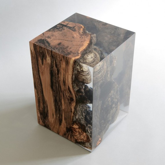 alcarol-Funghi Stool4