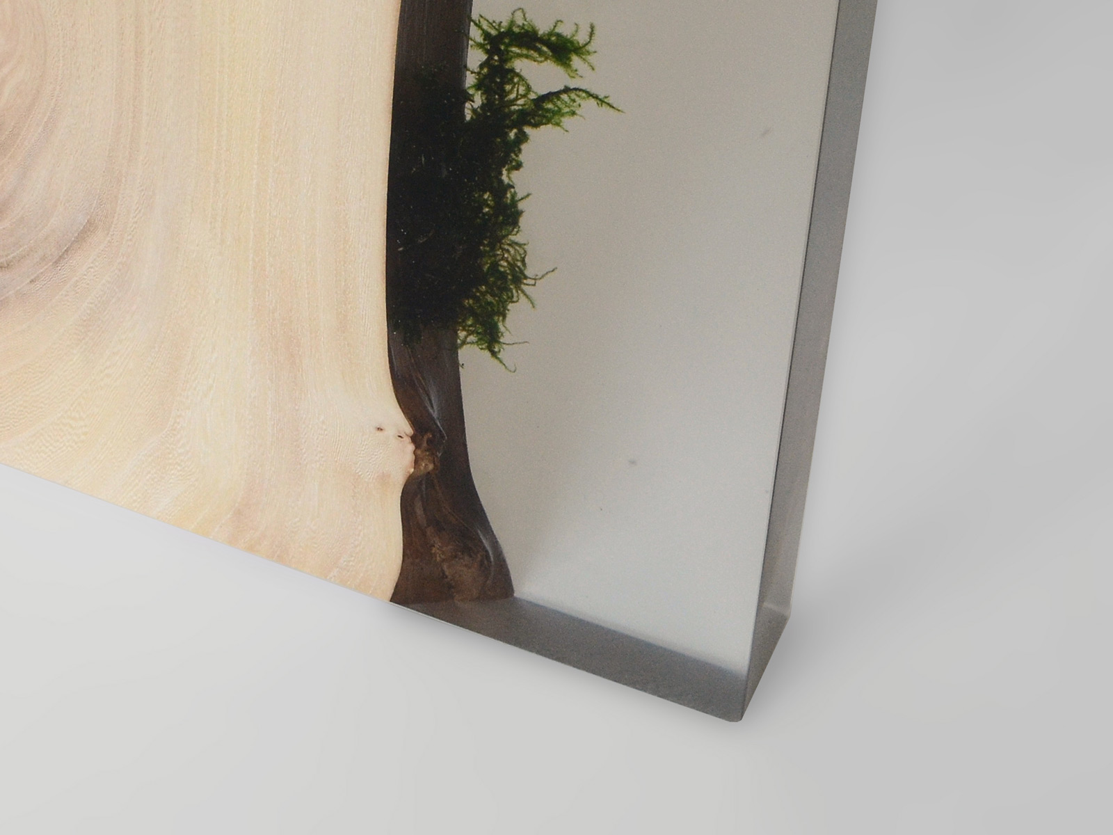 Alcarol Undergrowth Collection - Trail Console sans stool - P9