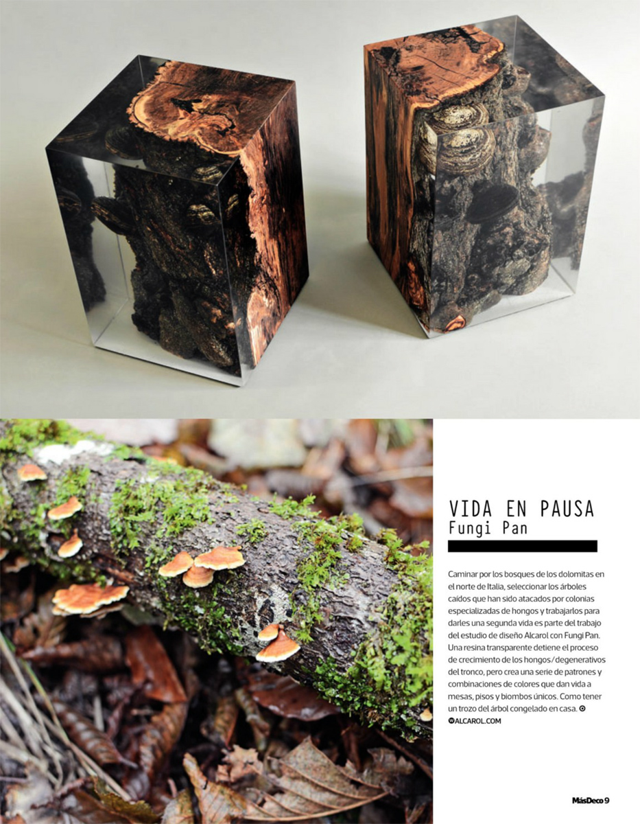 alcarol-MasDeco-Chile-Fungi Stool-may 2016