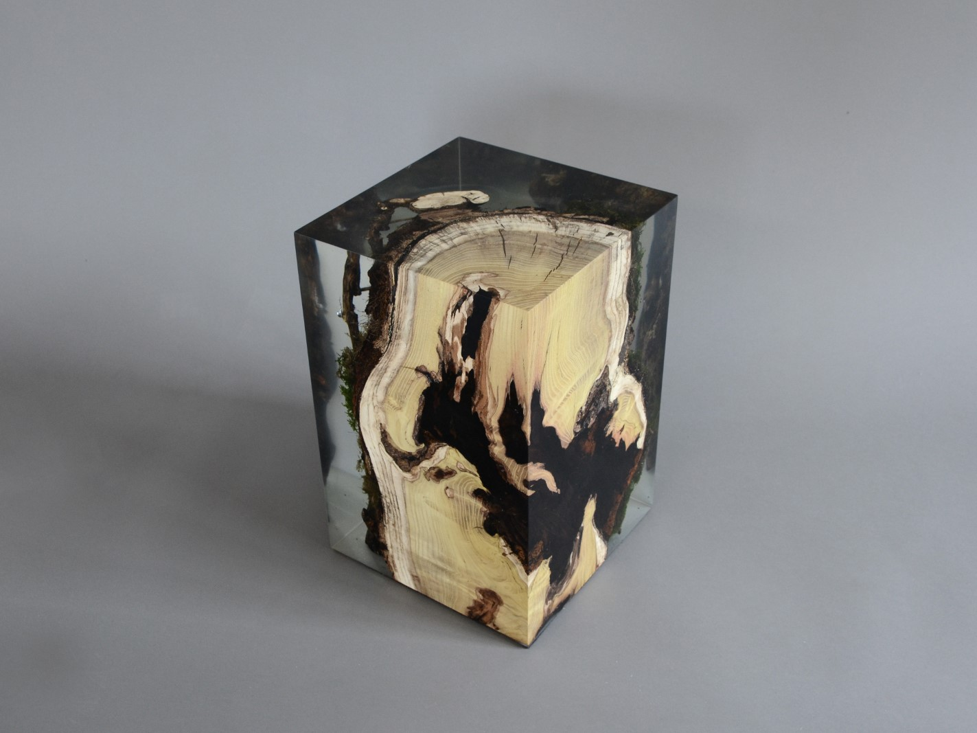 alcarol_stump stool mulberry_01